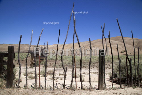 San Benito County California dried up grassland after 4 year drought. Parched Agricultural land due to extreme drought - David Bacon - 2013-04-29