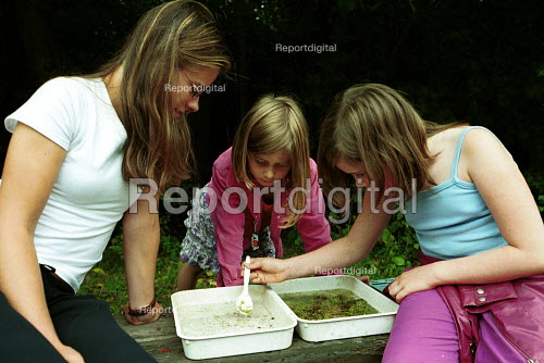 Children examining water specimens whilst Pond Dipping at a Local Nature reserve Islington London - Duncan Phillips - 2002-08-12