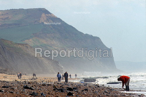 Fossil Hunters Lyme Bay Dorset UK - Duncan Phillips - 2003-06-30