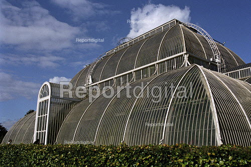 Palm House at Kew Gardens - Duncan Phillips - 2006-04-06