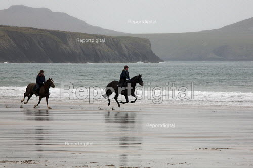 Rider and horse galloping on the Beach, Whitesands, Pembrokeshire, Wales. - Duncan Phillips - 2009-04-13