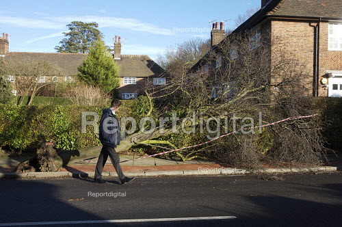 Storm damage caused by high winds, London. - Duncan Phillips - 2007-01-19