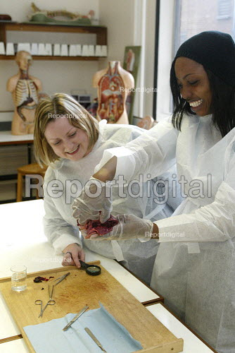 6th form school pupils examining a heart in a university, as a way to encourage them into higher education. - Duncan Phillips - 2005-03-29