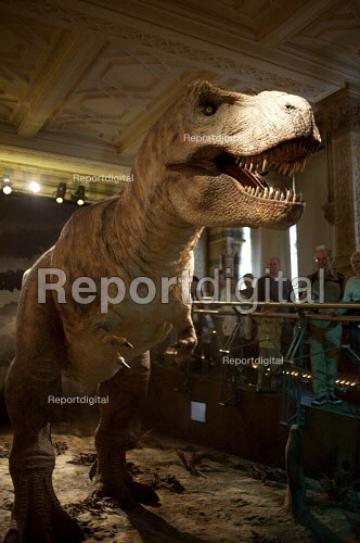 Model of T REX dinosaur, Natural History Museum, London - Duncan Phillips - 2007-10-24