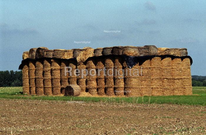 Hayrick, Normandy. - Duncan Phillips - 2005-07-15
