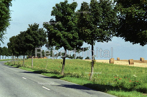 Road and farmland, Normandy. - Duncan Phillips - 2005-07-15