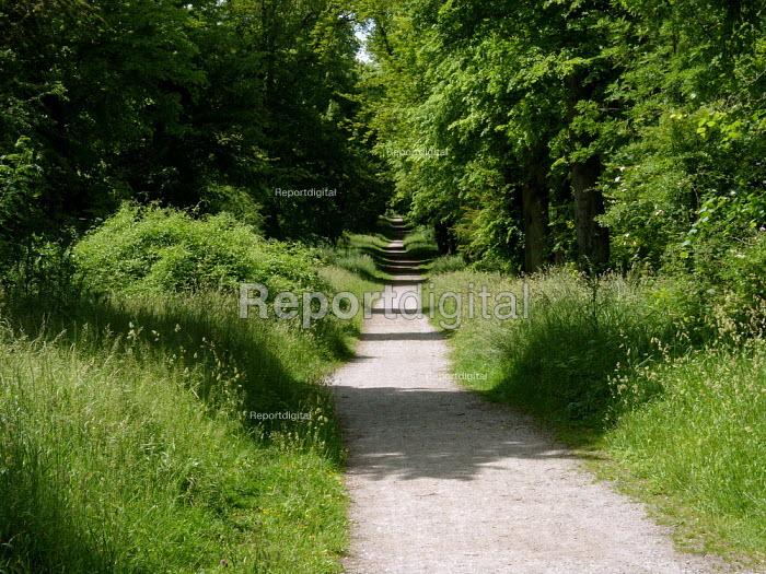Part of the Ridgeway long distance footpath, Chiltern hills - Duncan Phillips - 2005-06-23