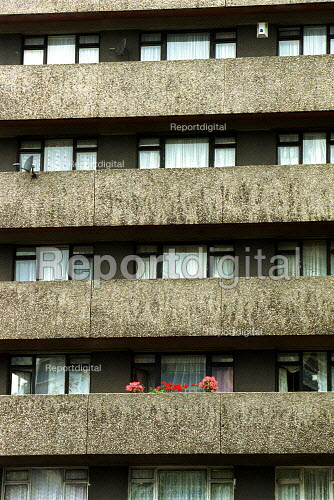 Flowers in a window box on the balcony of a high rise block, Housing Estate. London - Duncan Phillips - 2003-06-10
