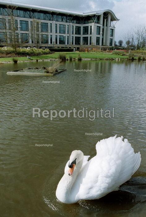 White swan on ornamental lake, Britannic Assurance office. - John Harris - 2001-03-29