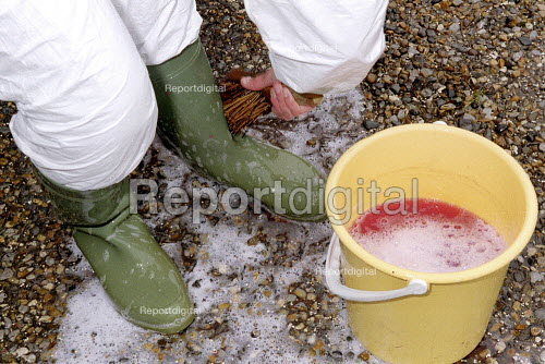 Maff Vet and Animal Health Officer disinfecting Wellington boots to stop any spread of infection before making a farm inspection for symptoms of foot and mouth disease. - John Harris - 2001-03-28