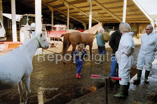 Maff Vet and Animal Heath Officer visiting a farm to carry out an inspection, checking for symptoms of foot and mouth disease in an at risk area. Farmer's wife and daughter crossing the farmyard leading a horse and a pony. - John Harris - 2001-03-28