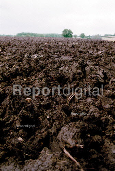 Ploughed farmland. - John Harris - 2001-06-17