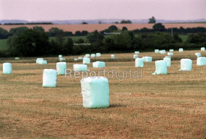 Crops bundled in plastic in a field on a farm. - John Harris - 2001-07-01