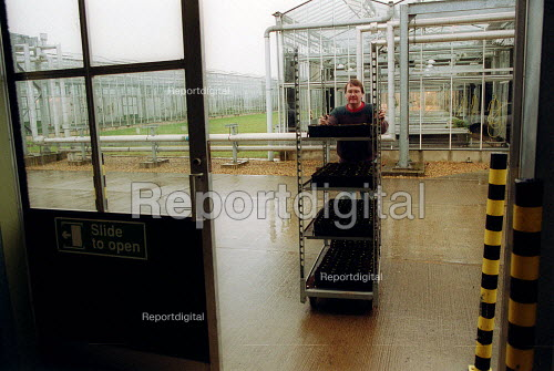 Scientist moving plants from greenhouses at Horticulture Research International. HRI Wellesbourne, Warwickshire - John Harris - 2003-04-13