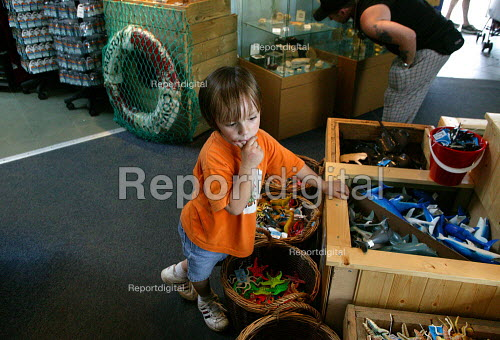 Child trying to decide which toy to buy Seaquarium shop, Weston Super Mare. - John Harris - 2003-08-04