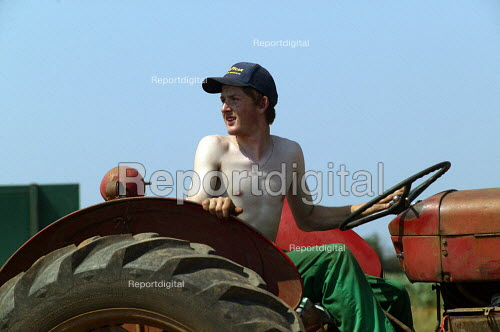 Farmworker driving a tractor and trailer, bringing in the harvest. Warwickshire. - John Harris - 2003-08-06