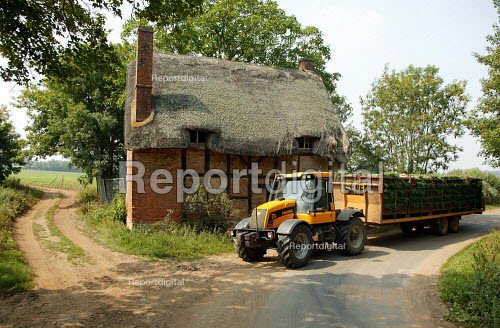 Spring Onions being transported down a country lane by tractor and trailer, Warwickshire - John Harris - 2003-08-07