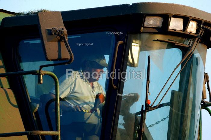 Farmer driving a combine harvester to reap the harvest. Warwickshire. - John Harris - 2004-09-02