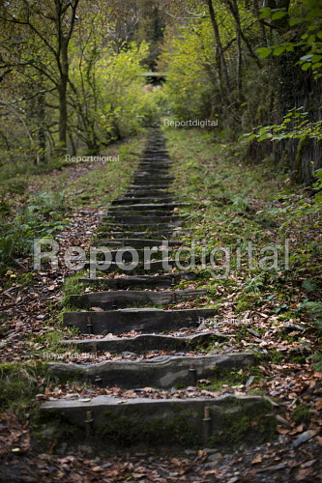 Steps. Nant Gwernol Forest and Bryn Eglwys abandoned slate Quarry, Abergynolwyn. Snowdonia National Park. Wales. - Jess Hurd - 2014-10-28