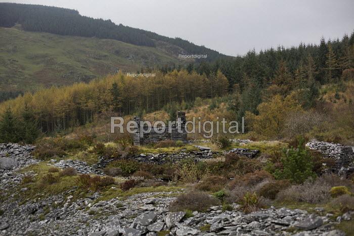 Nant Gwernol Forest and Bryn Eglwys abandoned slate Quarry, Abergynolwyn. Snowdonia National Park. Wales. - Jess Hurd - 2014-10-28