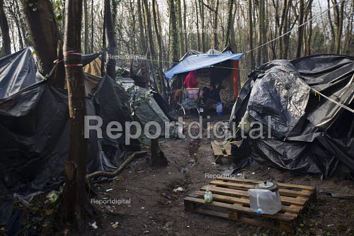 Appauling living conditions for Calais migrants from Afghanistan living rough in freezing conditions in the jungle. France. - Jess Hurd - 2015-01-13