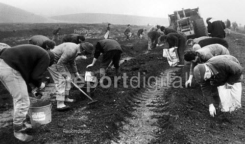 Miners Strike, striking miners riddling for coal on an old colliery tip. The earth moving equipment helps uncover the coal. - John Sturrock - 1984-12-10