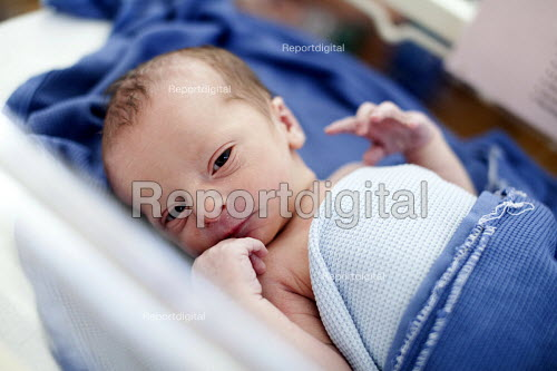 A new born baby boy hours after he was born. The mother is an IVF patient who has obstetric cholestasis a rare complication of pregnancy. Which is a build-up of bile acids in the bloodstream and liver. Southmead hospital, Bristol. - Paul Box - 2012-09-25
