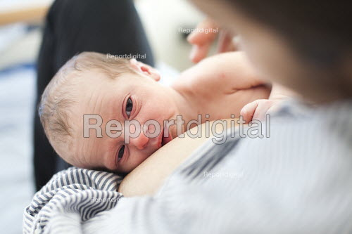 A new born baby sleeps with his mother. The mother is an IVF patient who has obstetric cholestasis a rare complication of pregnancy. Which is a build-up of bile acids in the bloodstream and liver. Southmead hospital, Bristol. - Paul Box - 2012-09-29