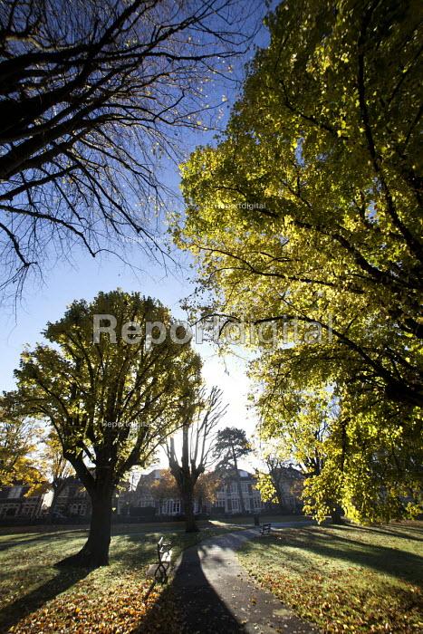 Autumn scene at St Andrews Park Bristol. - Paul Box - 2012-11-11