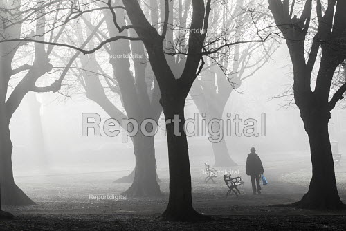 Fog in St Andrews Park, Bristol. - Paul Box - 2015-02-09