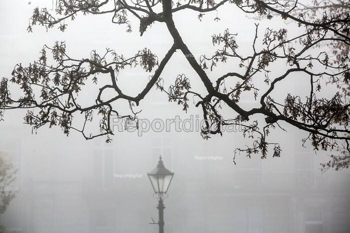 Streetlamp in the fog, Bristol - Paul Box - 2014-11-30