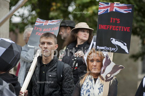 Animal welfare group Team Badger protest against Badger cull Westminster London - Philip Wolmuth - 2015-09-08