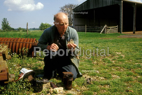 Mixed farmer tending to bees - Joanne O'Brien - 20021024