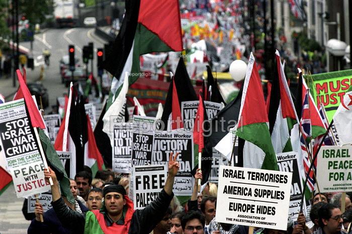 Palestinian demonstration against Israeli occupation - Paul Mattsson - 2002-05-18