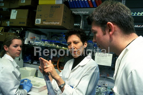 Cancer specialised researching gene therapy St Barts St Bartholomew's Bart's Hospital - Joanne O'Brien - 20021024