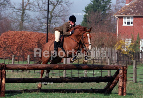 Equine studies. Show jumping - Roy Peters - 1997-03-11