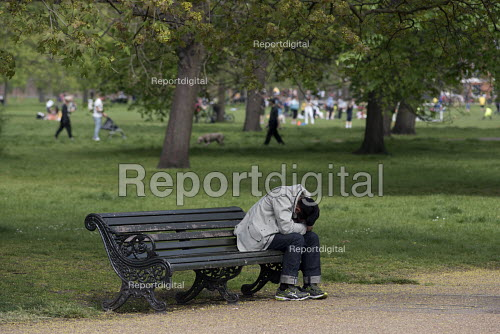 Report Digital Man Sleeping On A Park Bench Kensington Gardens