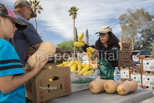 Marana, Arizona, USA Volunteers from St. Christpher Catholic Parish distributing produce provided by the Borderlands Food Bank. It distributes 30 to 40 million pounds of produce each year that would otherwise end up in landfill - Jim West - 2017-04-08