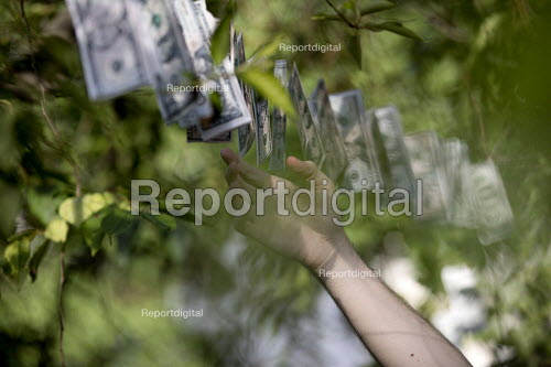 Magic money tree, dollars only, anti Brexit Pro EU protest, St James Park, Westminster, London - Jess Hurd - 2017-06-30
