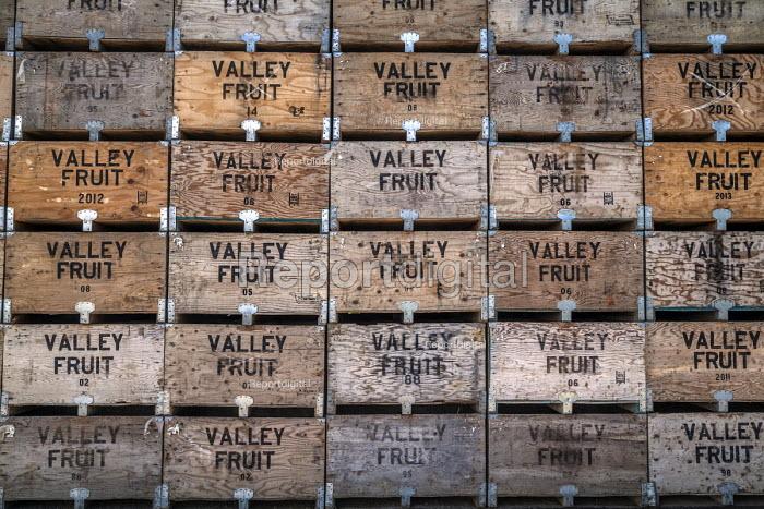 Washington, USA: Fruit boxes stacked awaiting the beginning of the apple harvest  Copyright David Bacon - David Bacon - 2018-07-16