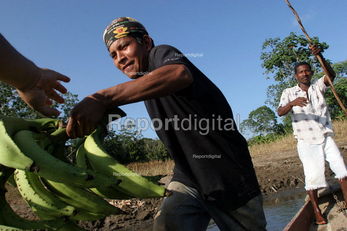 An indigenous man who benefits from a UNHCR-funded micro credit programme loads a pirogue with Plantanos bananas to be sold on the market, near Yaviza, Darien region, Panama, January 2006. This remote region is only accessible by boat. - Boris Heger - 2006-08-30