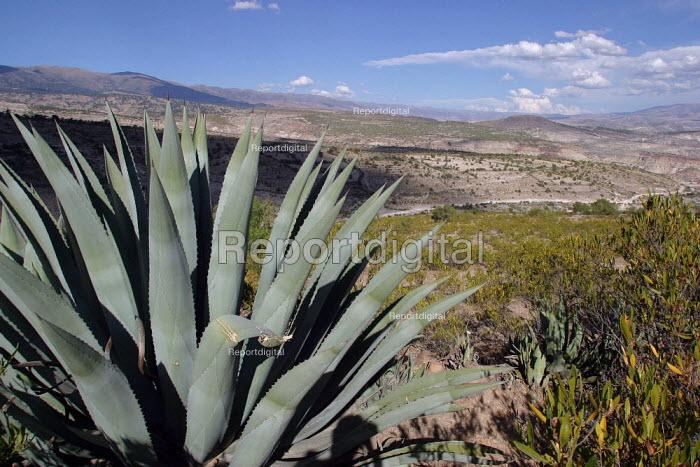 View of the region of Ayacucho, near Toccasquesera, Peru, September 2004 - Boris Heger - 2004-08-29