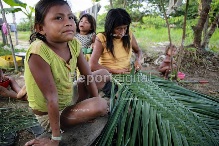 Internally displaced indigenous children helping their mother weave some leaves into a roof for their shelter on the outskirts of San Jose del Guaviare, Colombia. - Boris Heger - 2011-01-17