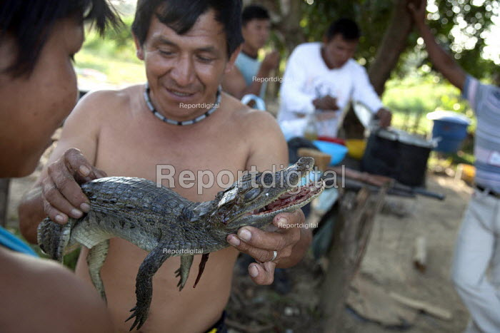 Internally displaced indigenous men who just came back from a weeks hunting, ready to cook a young crocodile in their shelter. San Jose del Guaviare, Colombia. - Boris Heger - 2011-01-20