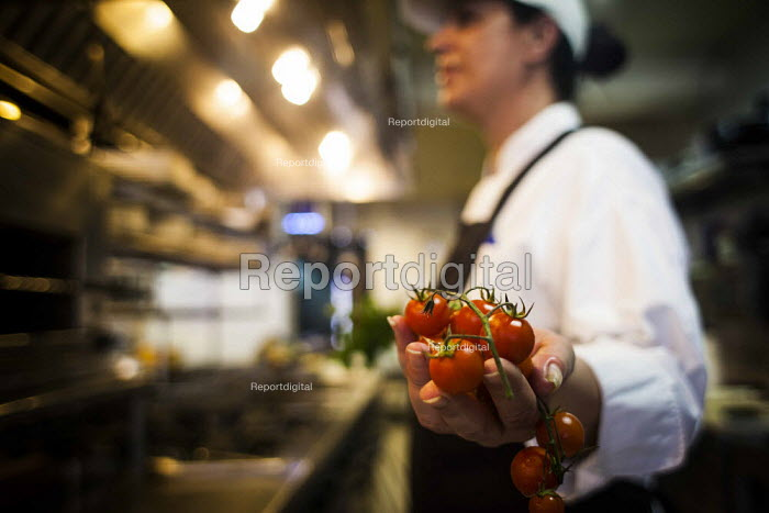 Chefs preparing food, Tropicana Hotel kitchen. Tourism is a vital industry for the maltese economy, contributing 15 to its GDP. Since 2009 Malta has experienced a 10 drop in tourism. Tropicana Hotel. Saint Julians, Malta. - Connor Matheson - 2015-04-21