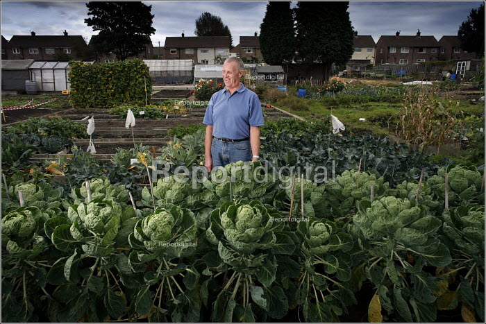Blind gardener of the Year Harry Wardle at his allotment in Reddish, Stockport. - Christopher Thomond - 2005-10-14