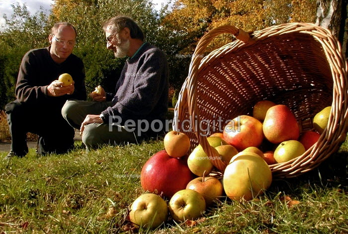Julian Brandram preparing for Apple Day at Abbeyfield Park: discussing the crop with Lee Furness of Green City Action, who are hosting the Apple Day - David Bocking - 2000-10-17