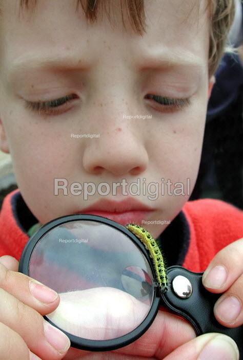 Boy examining a caterpillar at the Earth Centre, Doncaster - David Bocking - 2002-08-29