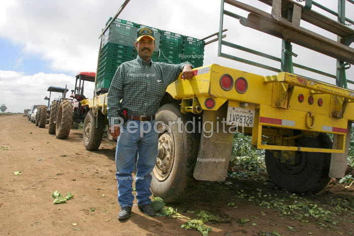 Labor contractor Nasario Dominguez leans on a trailer next to a field in Chualar, where two of his crews are harvesting broccoli. Many workers in his crews are migrants from Oaxaca and Guerrero. California USA - David Bacon - 2006-08-24
