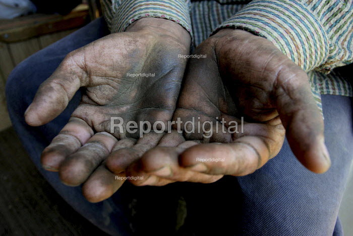 The hands of Benito Parra, an olive worker, show the dirt and grime of a day picking olives. California USA - David Bacon - 2006-09-27